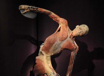 Вставка «The Human Body» теперь и в Киеве