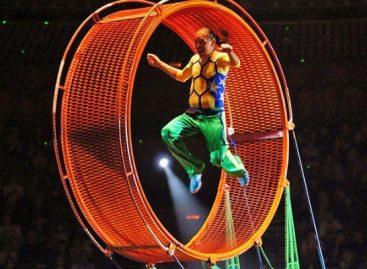 В столичном цирке во время своего выступления упал с большой высоты акробат