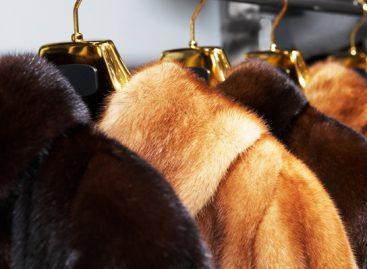 Что нужно знать о химчистке меховых изделий?
