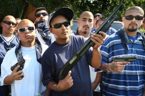 В США хотят мексиканские наркокартели признать террористическими группировками