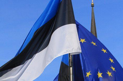 Глава Эстонии нашла способ вывести страну на один уровень с другими членами ЕС и НАТО