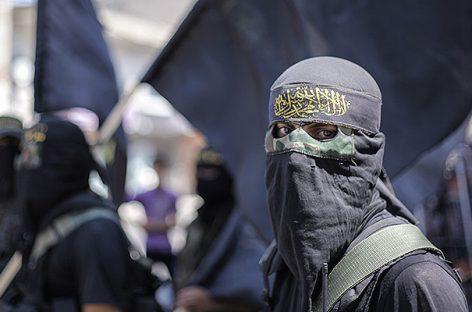 Мировая общественность боролась с ИГИЛ, пока «Аль-Каида» становилась сильнее
