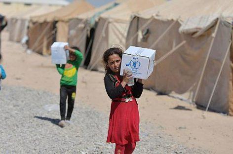 Глава Франции выступил за сохранение проведения гуманитарных операций ООН в Сирии