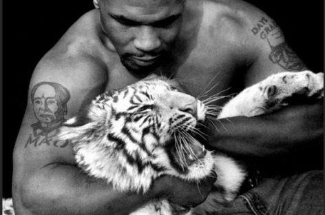 Майк Тайсон объяснил причину расставания с тигром