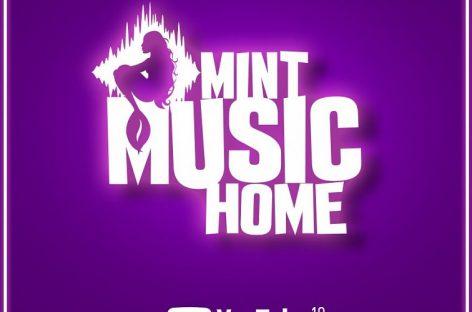 Организаторы «Дикой мяты» запускают онлайн-проект «MintMusicHome»