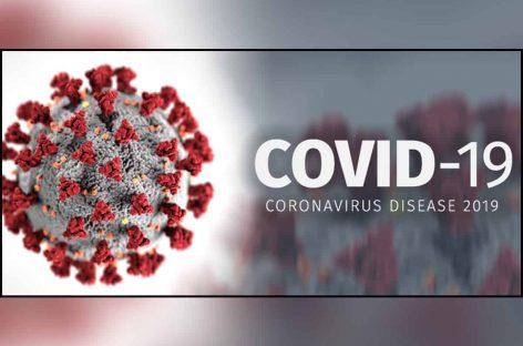 Данные по COVID-19 в мире на 10 июля