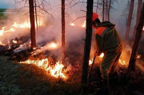 В Авиалесоохране рассказали о бушующих пожарах в регионах России